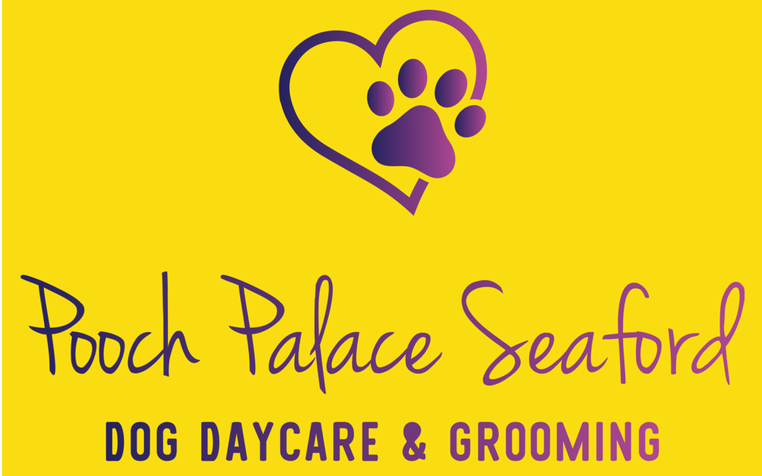Pooch Palace Open Day